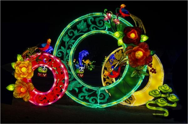 Special TopicCirclesColor Advanced_Chinese Lantern Festival_Bernie Solomon_20171116_Medal
