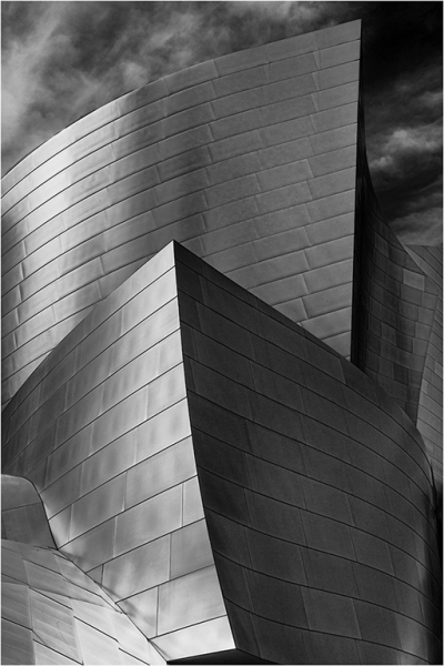 HM - Curves by Alan Bogard